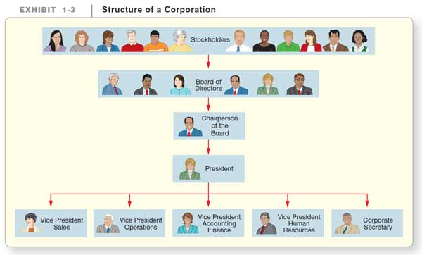 آموزش حسابداری از مبتدی تا پیشرفته: چارت سازمانی یک شرکت سهامی