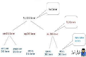 دوره آموزشی Network Plus - ساختار اسامی و نحوه تحلیل نام های اینترنتی