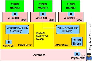 دوره ویدئویی آموزش Vmware Workstation - کار با کارت شبکه ها در Vmware Workstation