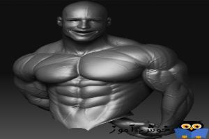 19 نکته برای ساخت 5 پوند عضله در 28 روز - سوال چهارم، چطور سیکس پک دار شوم؟