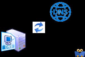 آموزش Export گرفتن و Import کردن Zone های DNS در ویندوز سرور
