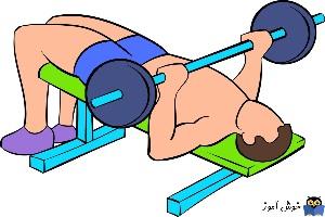 تمرینات با دمبل برای رشد عضلات سینه و سرشانه