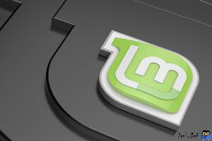 نمایش پردازش های در حال اجرا در Linux Mint